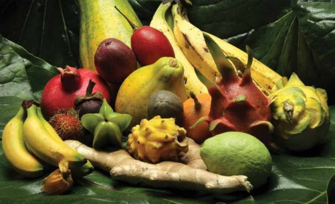 fruits_tropicaux1-min