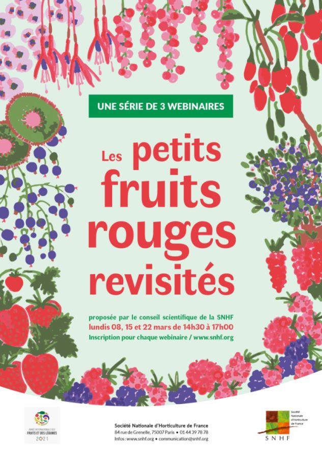 JI-2021-Les-petits-fruits-rouges-revisités-min